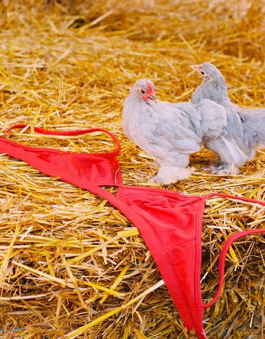 lingerie soutien-gorge sans armatures Carnation Tan 32 € Girls In Paris photo 2