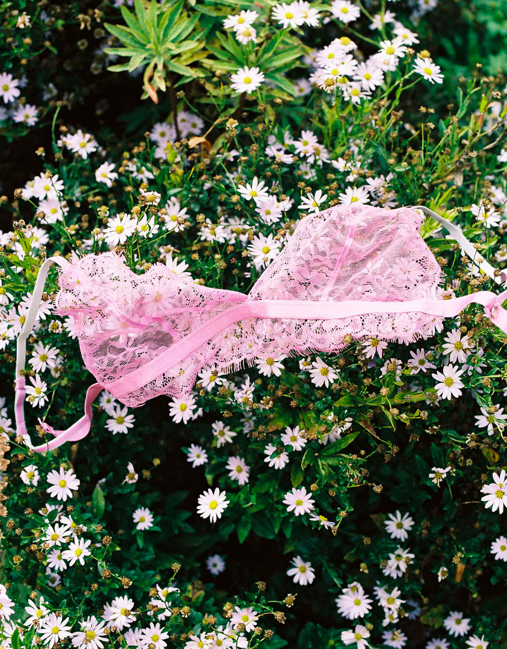 lingerie soutien-gorge sans armatures Charlie B. Good Rose Gum 29 € Girls In Paris photo 4